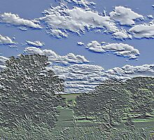 Unique Etched Texture Style Tree Filled Landscape and Clouds by Adri Turner