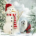 Snowdrop the Maltese & The Jolly Snowman by Morag Bates