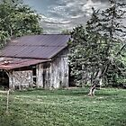 This Old Barn by LarryB007