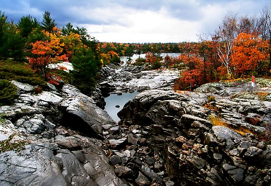 Muskoka at fall by naman
