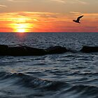 Lake Erie Sunset by Robert Daveant