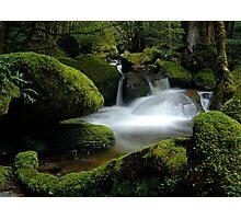 Mossy Cascades Photographic Print