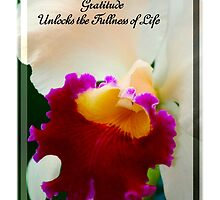 Gratitude Unlocks The Fullness Of Life by Madeline M  Allen