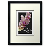 Gratitude Brings Peace For Today Framed Print
