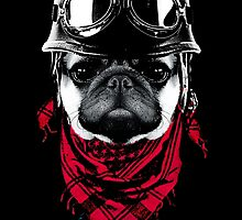Adventurer Pug by clingcling
