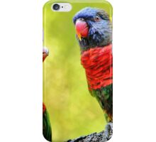 Two Rainbow Lories iPhone Case/Skin