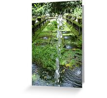 The other side of the pond Paronella Park Queensland Greeting Card