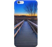 Bare Trees from Summer Long Forgotten iPhone Case/Skin