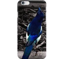 Mr Magpie iPhone Case/Skin