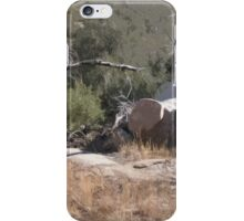 Southwest Branch and Rock No. 1 iPhone Case/Skin