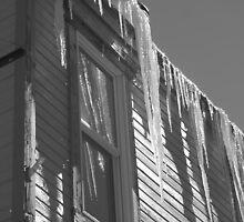 Icicles on an eave in Ouray, Colorado by bluerabbit