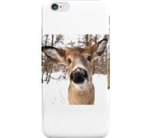 Nosey - White-tailed Deer iPhone Case/Skin