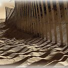 Like Waves in the Sands of Time  by Susan Werby
