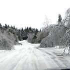 Ice Storm 2013 - Narrowed Road Ahead by Martha Medford