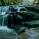 Leura cascades in the Blue Mountains Australia by STEPHEN GEORGIOU