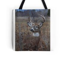 Splendor in the Grass - White-tailed Deer Tote Bag