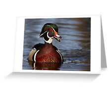 Wood Duck laugh Greeting Card