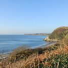 Back bay, Monreith, S W Scotland -dedicated to Viv (vigor) by sarnia2