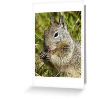 Breakfast of champions.. Cambria California Greeting Card