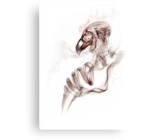 Smoke bird ghost Canvas Print