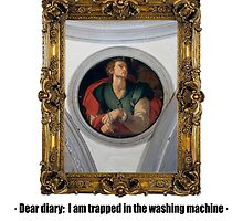 Dear diary: I am trapped in the washing machine by ayay