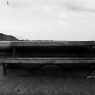 The Beach-side Bench by Paul Martin