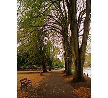 Autumn Walk Photographic Print