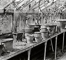 Pots by newbeltane