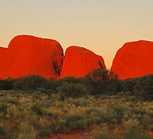 Olgas Sunset by Penny Smith