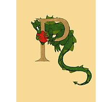 """Oscar and the Roses """"P"""" (Illustrated Alphabet) Photographic Print"""