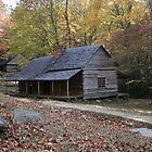 Smoky Mountain Log Cabin and Log Barn by shotzbyjay