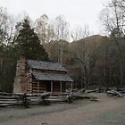 Smoky Mountain Log Cabin - John Oliver Place by shotzbyjay