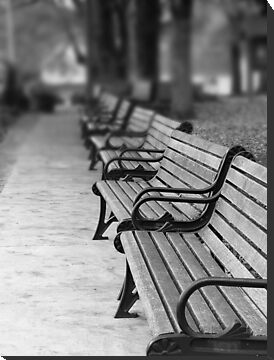 Paris Park Benches by digerati