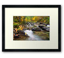 Seasons Passage Framed Print