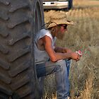 Waiting For the Combine by Gretchen  Mueller Steele