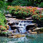 Babbling Waterfall by BiGPaPa