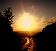 Sunsets Golden by drjones