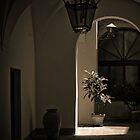 Italian Courtyard by Caimin Jones