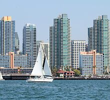 San Diego Skyline by Jane Girardot
