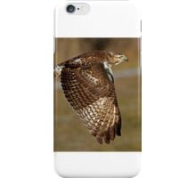 Red-tailed Hawk iPhone Case/Skin