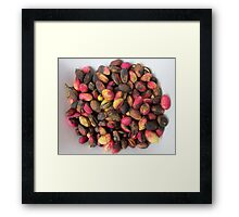 Pink pistachios Framed Print