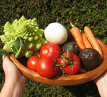 appetizing vegetables  by daffodil