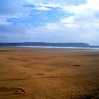 Lonely on the beach by simonpeter