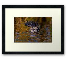 Dark Water Predator Framed Print