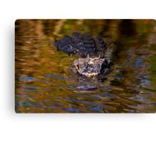 Dark Water Predator Canvas Print