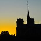 Paris, Notre Dame, Yellow Sky by Andrew Reid Wildman