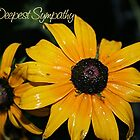Deepest Sympathy Blacked Eyed Susan by shellyb