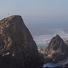 Rocky Stacks on the Pacific Coast by journeysincolor