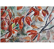 Watercolor Leaves Photographic Print