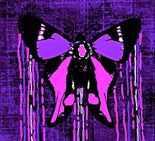 Butterfly Deep Purple and Pink by Saundra Myles